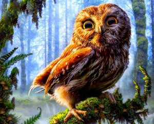 Owl in the Forest Painting by Numbers