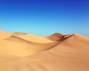 Desert Sand Dunes Paint by Numbers