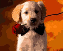 Load image into Gallery viewer, Dog with Rose Paint by Numbers
