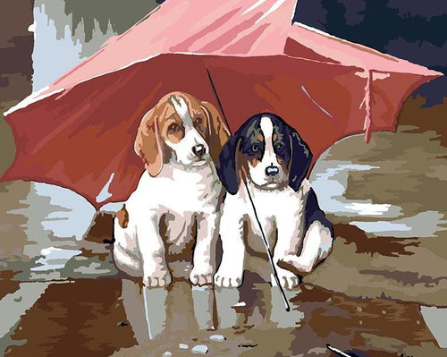 Dogs Under Umbrella Paint by Numbers