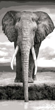 Load image into Gallery viewer, Elephant Painting by Numbers