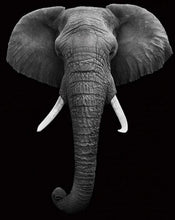Load image into Gallery viewer, Elephant Wall Art Paint by Numbers