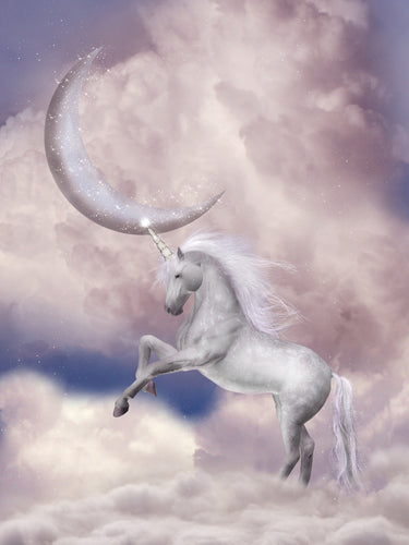 Fantasy Unicorn Paint by Numbers