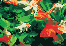 Load image into Gallery viewer, Gold Fish Paint by Numbers