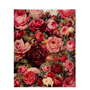 Gorgeous Rose Paint by Numbers