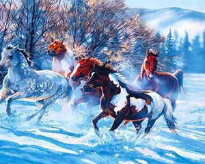 Horses in Snow Paint by Numbers