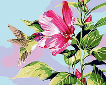 Load image into Gallery viewer, Humming Bird Paint by Numbers