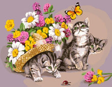 Load image into Gallery viewer, Kittens & Flowers Paint by Numbers
