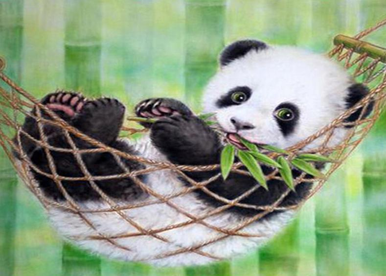 Panda Paint by Numbers Kit