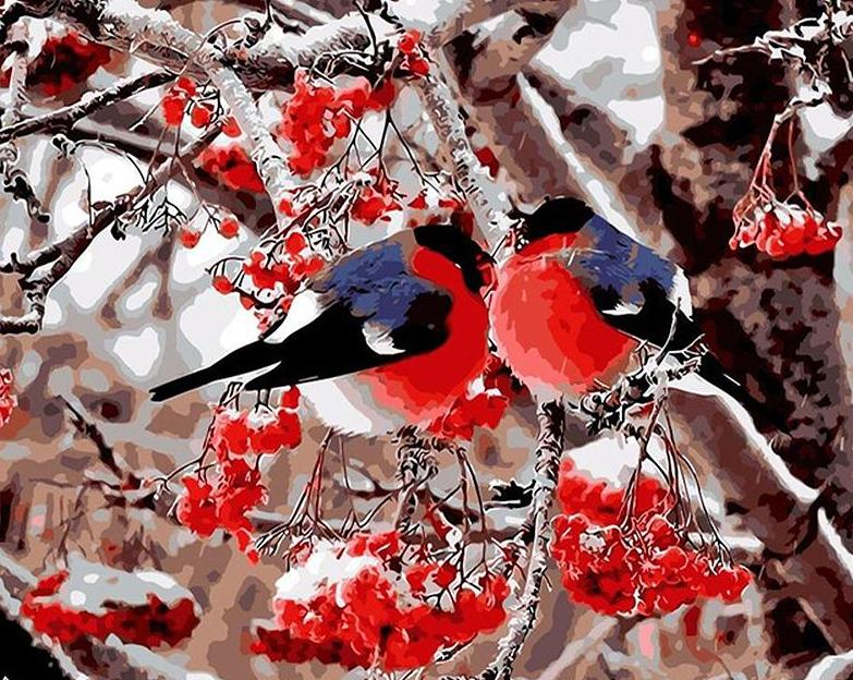 Pair of Bullfinch Paint by Numbers
