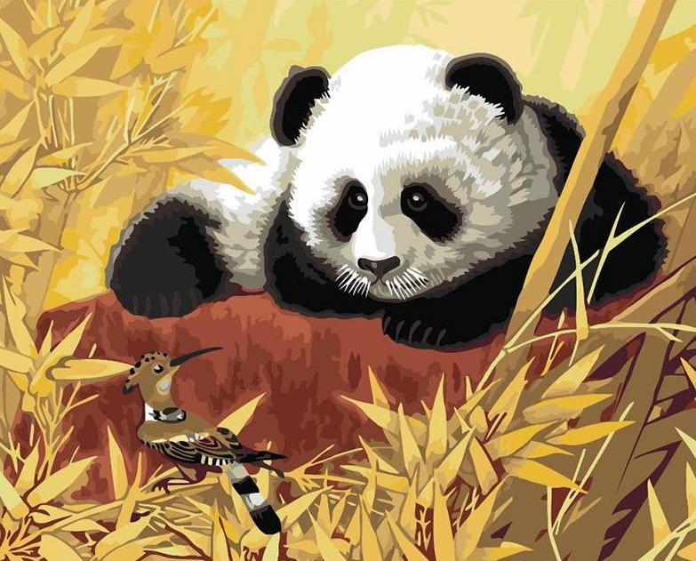 Panda & Bird Paint by Numbers