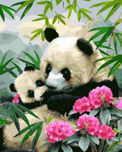 Load image into Gallery viewer, Pandas & Flowers Paint by Numbers