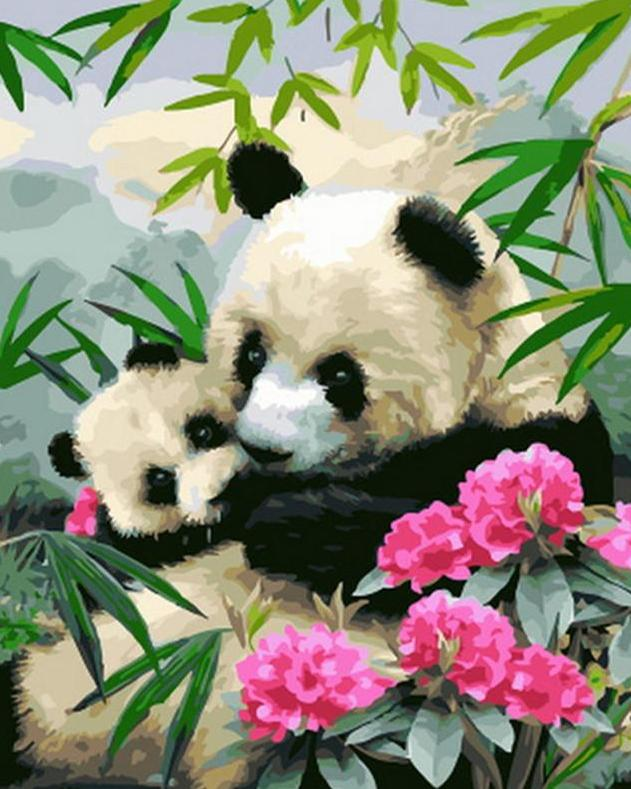 Pandas & Flowers Paint by Numbers