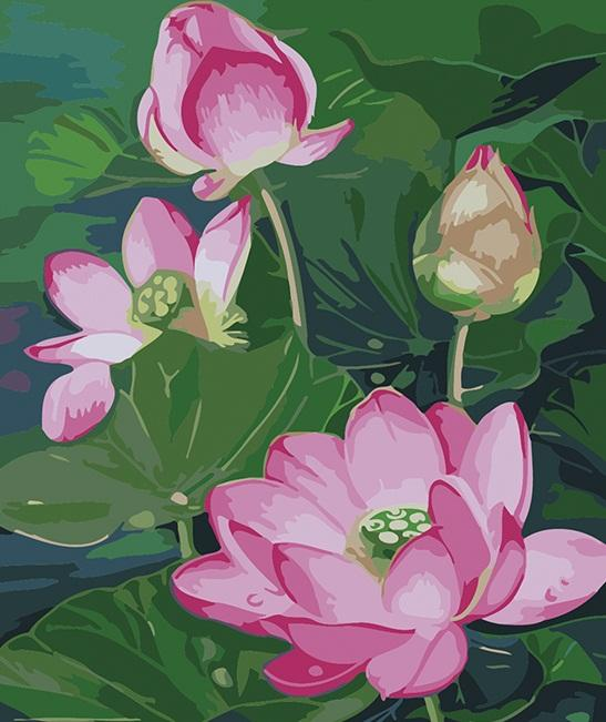 Pink Lotus Painting by Numbers