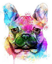 Load image into Gallery viewer,  French Bulldog Paint by Numbers