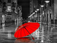 Load image into Gallery viewer, Red Umbrella Paint by Numbers