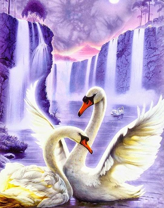 Swans Fantasy Paint by Numbers