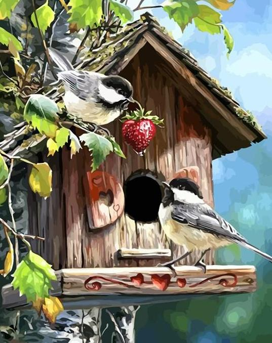 Birds House Paint by Numbers