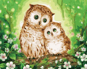 Owl Paint by Numbers Kit