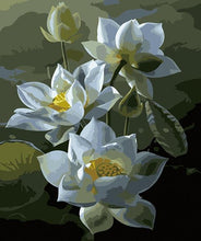 Load image into Gallery viewer, Teratai Lotus Paint by Numbers