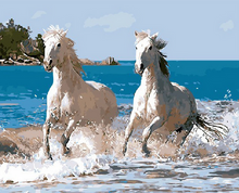 Load image into Gallery viewer, White Horses Paint by Numbers