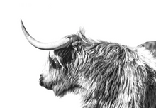 Load image into Gallery viewer, Wild Yak Paint by Numbers