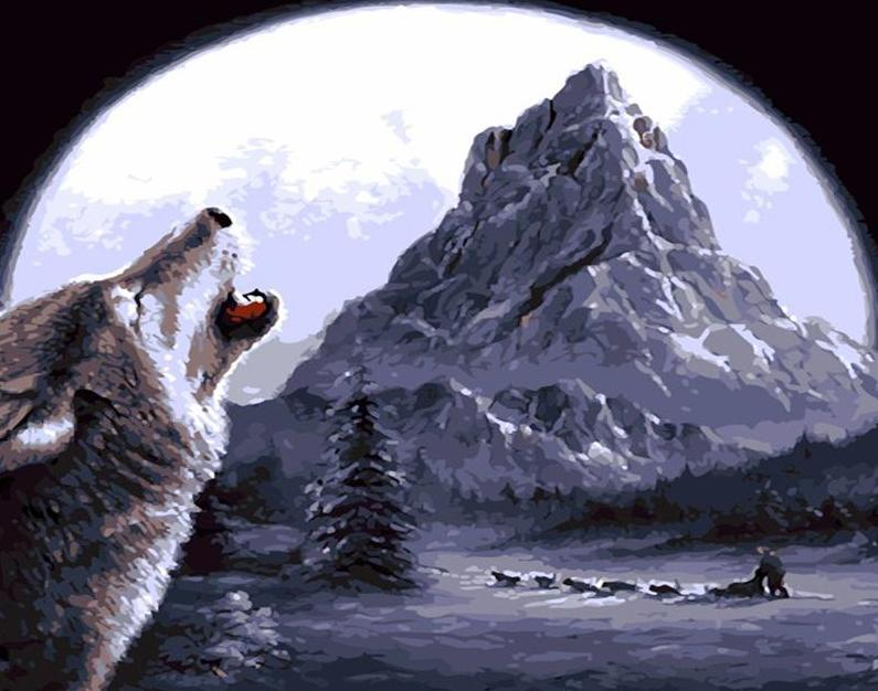 Wolf Howling Paint by Numbers