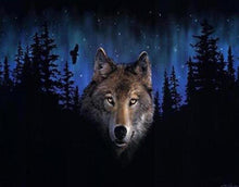 Load image into Gallery viewer, Wolf in the Dark Paint by Numbers