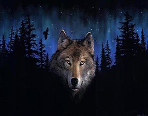 Wolf in the Dark Paint by Numbers