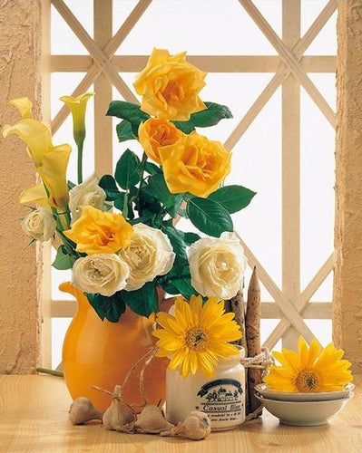 Yellow & White Roses Paint by Numbers