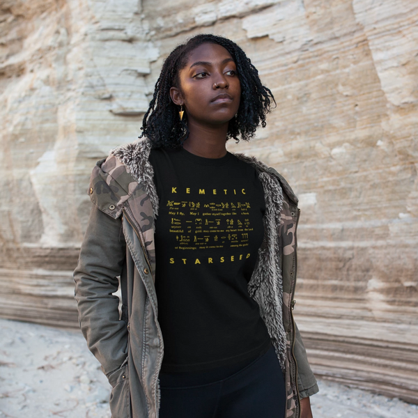 Kemetic Codes IV - Women's T-shirt