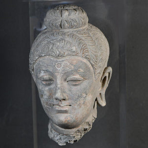 * A grey Stucco Head of a Buddha, Hadda, Gandhara, 4th - 5th century CE - Sands of Time Ancient Art