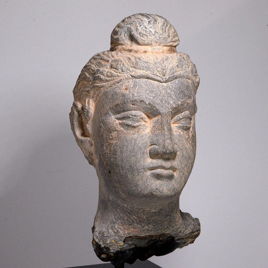 A Gandhara grey Schist Head of a Buddha, ca. 2nd Century AD