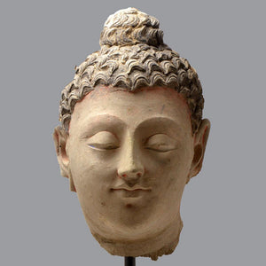 A large Gandhara Stucco Head of the Buddha, ca. 3rd century AD - Sands of Time Ancient Art