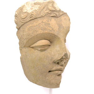 * A large stucco head of a Buddha, Gandhara, ca. 3rd century AD - Sands of Time Ancient Art