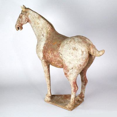 A Lively Terracotta Prancing Horse, China, Tang Dynasty, 618-907 AD - Sands of Time Ancient Art