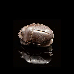 * A rare Egyptian Basalt Scarab, Late Period, 664 - 332 BCE - Sands of Time Ancient Art