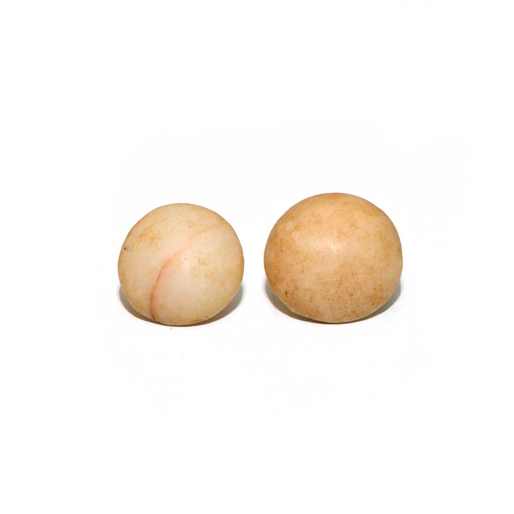 A pair of Egyptian Alabaster Earring Plugs, New Kingdom, 18th Dynasty, ca. 1550 - 1295 BCE - Sands of Time Ancient Art