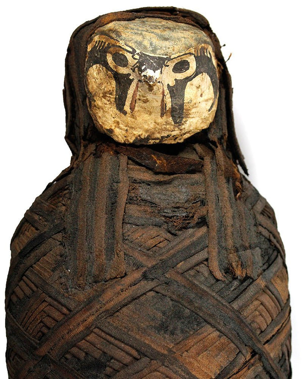 A large Egyptian Linen Wrapped Falcon Mummy with X-Ray, Ptolemaic Period ca 332 - 30BC - Sands of Time Ancient Art