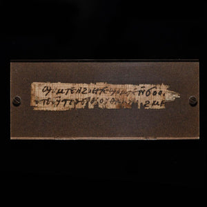 A Published Egyptian Papyrus Fragment with Coptic Text, ca. 500 - 799 CE