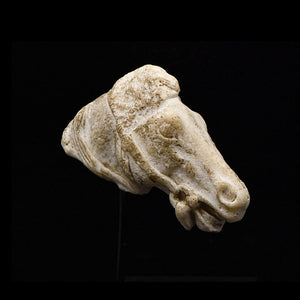 A Roman Limestone Head of a Horse, Roman Imperial Period, ca. 1st - 2nd century CE - Sands of Time Ancient Art