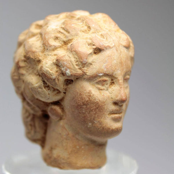 A Hellenistic Head of a Lady, Tanagra, ca 3rd - 1st century BC - Sands of Time Ancient Art