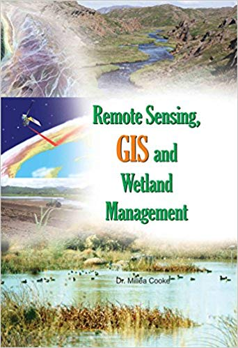 Remote Sensing, Gis and Wetland management - Online Bookshop in Nigeria | Shop Kids, health, romantic & more Books!