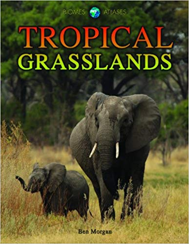 Tropical Grassland - Online Bookshop in Nigeria | Shop Kids, health, romantic & more Books!