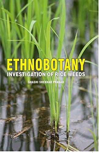 Ethnobotany Investigation of Rice Weeds - Online Bookshop in Nigeria | Shop Kids, health, romantic & more Books!