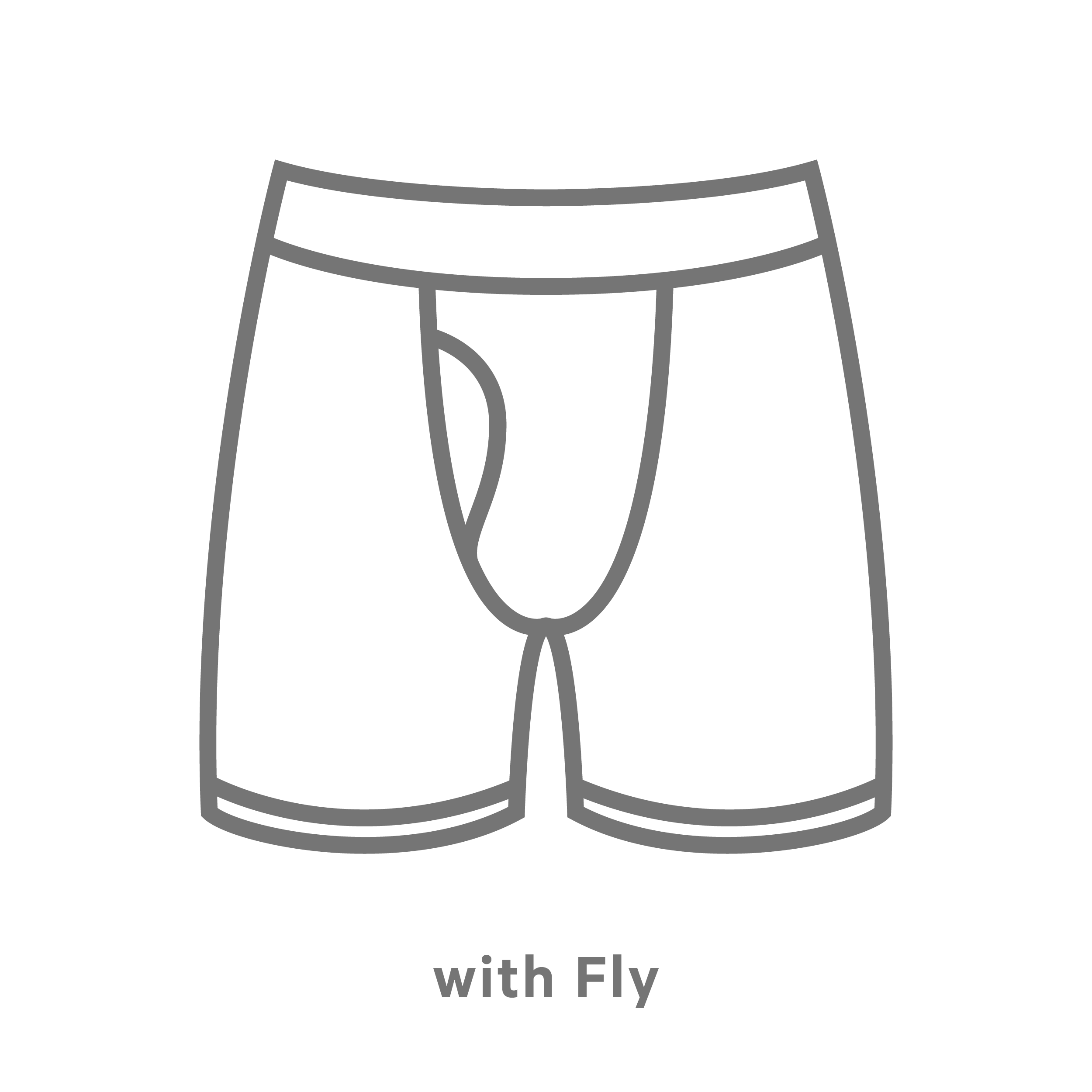 Boxer With Fly
