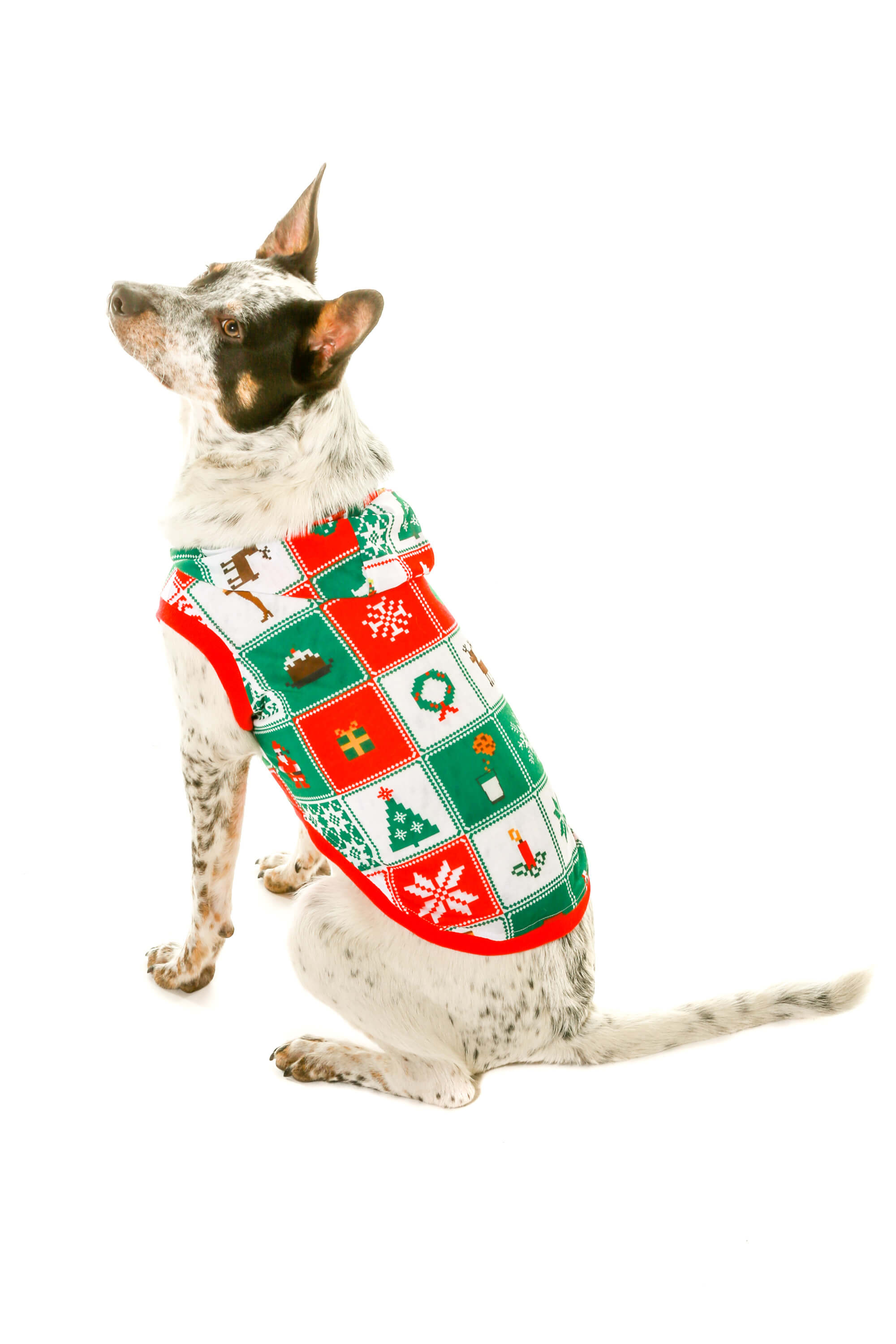 Matching Ugly Christmas Sweaters For Dog And Owner.Dress Up Your Dog Cat With Ugly Christmas Sweaters By Shinesty
