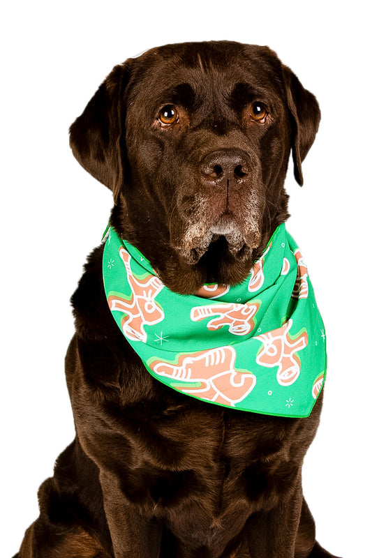 Holiday bandana for dogs