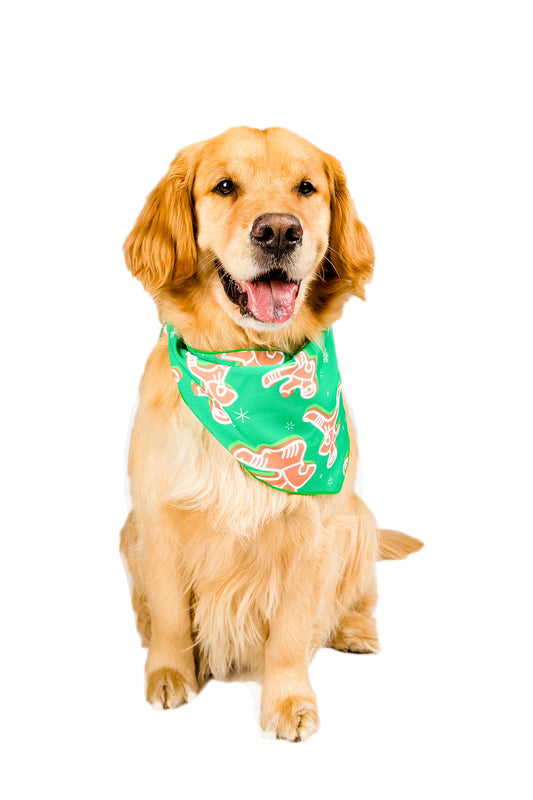 the Ninja Bread dog bandana