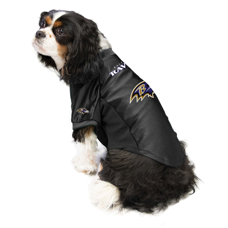 Ravens Outfit for Dogs